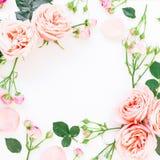 Cadre floral des roses, des bourgeons et des feuilles roses sur le fond blanc Configuration plate, vue supérieure Fond floral Photos libres de droits