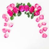 Cadre floral des roses et des pétales roses sur le fond blanc Configuration plate, vue supérieure Composition en jour de valentin Photos libres de droits