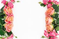 Cadre floral fait de roses, bourgeons et feuilles de vert sur le fond blanc Configuration plate, vue supérieure Fond de source Photos libres de droits
