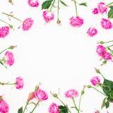 Cadre floral fait de roses, branches et feuilles roses sur le fond blanc Configuration plate, vue supérieure Composition en jour  Photographie stock libre de droits