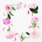 Cadre floral fait de roses roses sur le fond blanc Configuration plate, vue supérieure Composition en jour de valentines Photos libres de droits