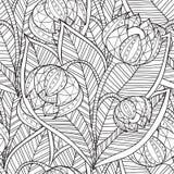 Cadre floral modelé par ornamental ethnique artistique tiré par la main Photographie stock