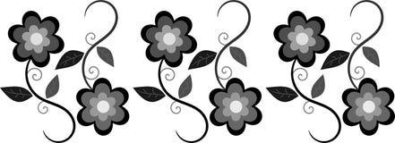 Cadre floral noir et gris Photographie stock libre de droits