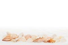 Cadre horizontal d'interpréteur de commandes interactif de mer sur l'essuie-main blanc image libre de droits