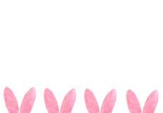 Cadre inférieur d'oreilles velues roses de lapin Photographie stock libre de droits