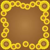 Cadre jaune de fleur Photos stock