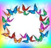 Cadre lumineux de blanc de papillon Photo libre de droits