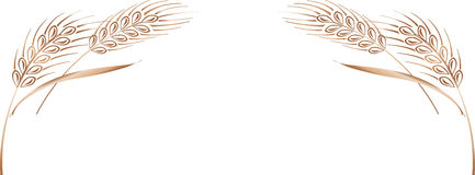 Cadre mûr d'oreilles de blé d'or, frontière ou élément faisant le coin Image stock