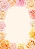 Cadre multicolore de roses images libres de droits