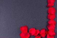 Cadre noir de fond de pétales artificiels Photo stock