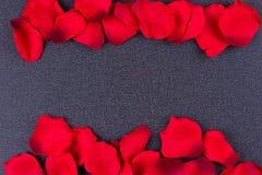 Cadre noir de fond de pétales artificiels Photographie stock