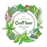 Cadre organique de vert d'houblon de bière sur le blanc illustration libre de droits