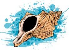 Cadre réglé d'icône sous-marine tropicale colorée de coquilles des coquilles de mer, illustration de vecteur Concept d'été avec l illustration stock