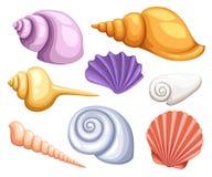 Cadre réglé d'icône sous-marine tropicale colorée de coquilles des coquilles de mer, illustration Concept d'été avec des coquille illustration libre de droits