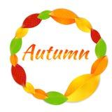 Cadre rond avec des feuilles d'automne Photo stock