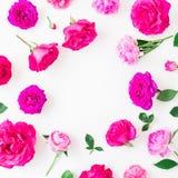 Cadre rond avec des roses et des pivoines roses d'isolement sur le fond blanc Configuration plate, vue supérieure Photo stock