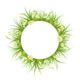 Cadre rond avec l'herbe et les marguerites Images libres de droits