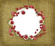 Cadre rond avec la guirlande rose Photographie stock