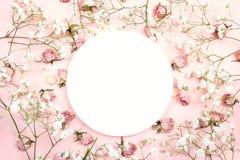 Cadre rond blanc avec de petites fleurs blanches et roses sensibles dessus Images stock