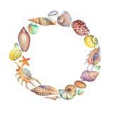 Cadre rond des coquilles de mer Photo stock