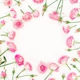 Cadre rond fait de roses, branches et bourgeons roses sur le fond blanc Configuration plate, vue supérieure Composition en jour d Image stock
