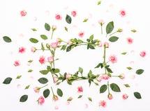 Cadre rond fait de roses roses et beiges, feuilles vertes, branches, modèle floral sur le fond blanc Configuration plate, vue sup Image stock