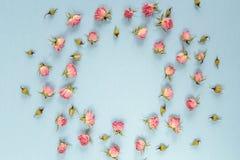 Cadre rond fait de roses roses sur le fond bleu Endroit pour le tex Image stock