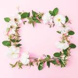 Cadre rond floral fait de fleurs blanches sur le fond rose Configuration plate, vue supérieure Fond en pastel Images libres de droits