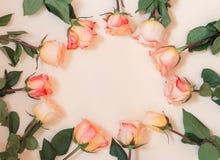 Cadre rond floral fait de roses roses Images stock