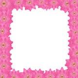 Cadre rose de damassé images libres de droits