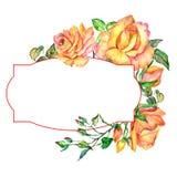 Cadre rose de fleur de Wildflower dans un style d'aquarelle Image stock