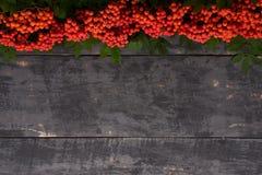 Cadre rouge de cendre de montagne sur une table en bois Photo stock