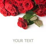 Cadre rouge de roses Image libre de droits