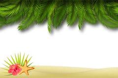 Cadre sans couture de frontière de plage Vecteur Image stock