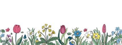 Cadre sans joint floral Fond avec la main colorée d'isolement d Images libres de droits