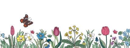 Cadre sans joint floral Fond avec la main colorée d'isolement d Image stock