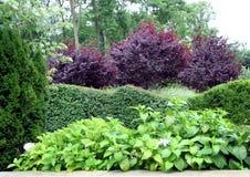 Cadre sous tension de vert autour de jardin images stock