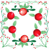 Cadre tiré par la main d'aquarelle Ranberries de ¡ de Ð Photographie stock libre de droits