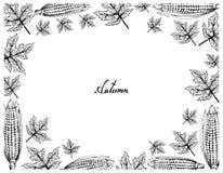 Cadre tiré par la main d'Autumn Maple Leaves et des grains illustration libre de droits