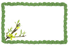 Cadre tressé avec des fleurs Images stock