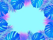 Cadre tropical avec les usines, les palmettes, le monstera et l'endroit exotiques de jungle pour votre texte fond de folliage Vec illustration libre de droits