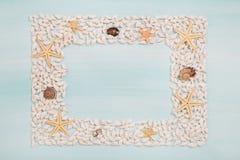 Cadre tropical des étoiles de mer et des coquilles pour la décoration maritime dedans Photo stock