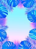 Cadre tropical exotique avec des usines, des palmettes, le monstera et l'endroit de jungle pour votre texte Fond de nature Vecteu illustration libre de droits