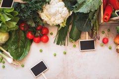 Cadre végétal de ressort frais et label vide de tableau Photos stock