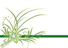 Cadre vert illustration libre de droits