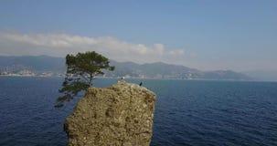 Cadrega`s rock, maritime pine tree, aerial view, waterfront between Santa Margherita Ligure and Portofino, Liguria, Italy. Cadrega`s rock, maritime pine tree stock video footage