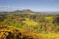 Cadres écossais Images libres de droits