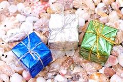 Cadres actuels sur le fond de seashell photos stock