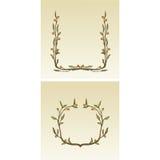 Cadres décoratifs de fleur Photo libre de droits