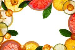 Cadres de conception de fruit Photographie stock